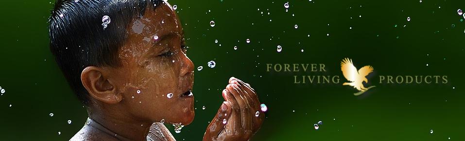 Hygiene forever living products flp aloe vera de la baie